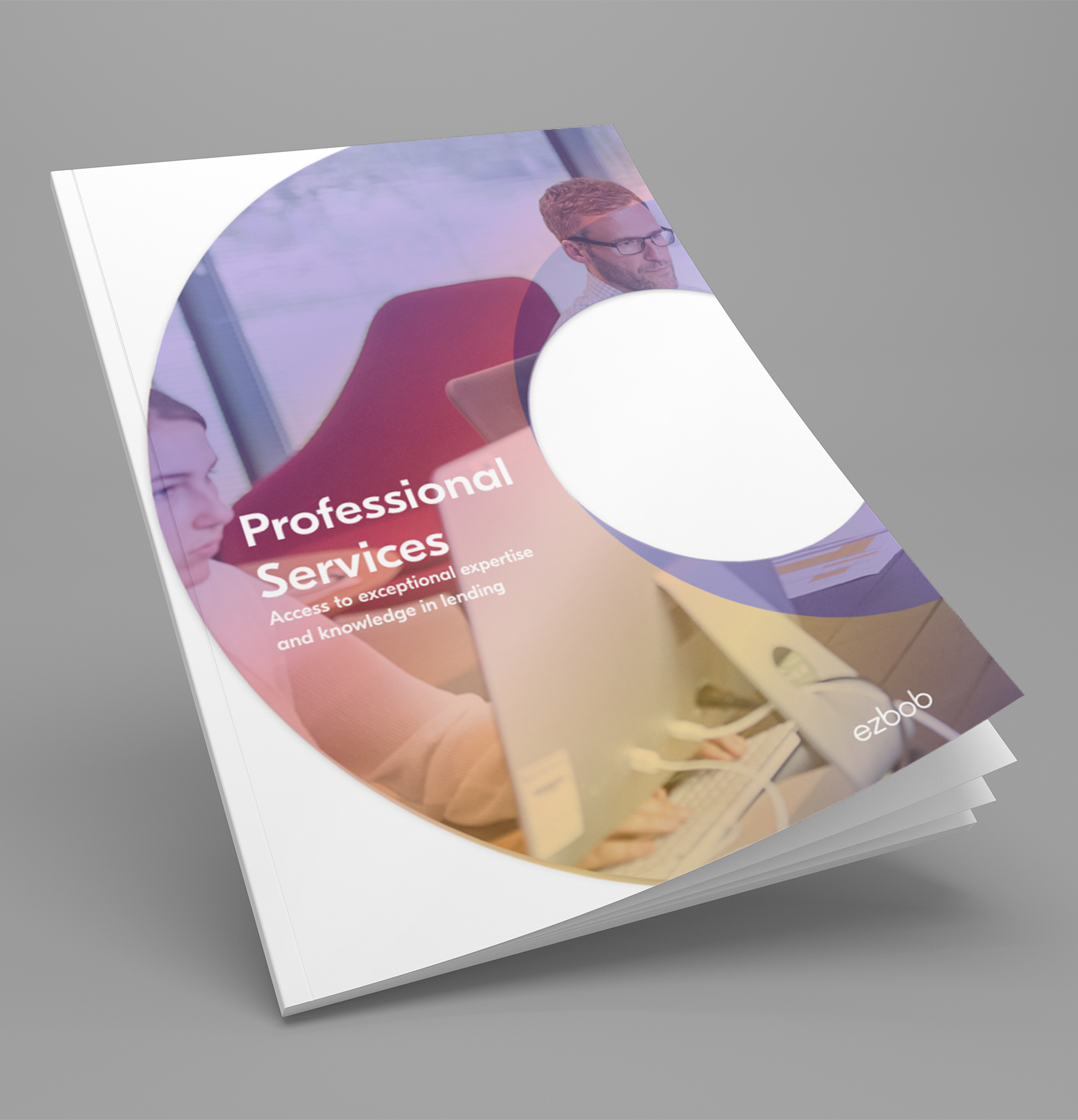 Professional Services cover01